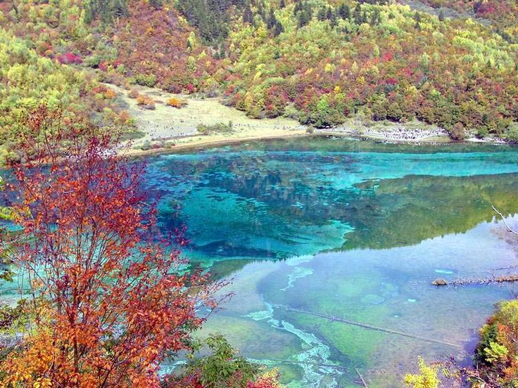 The colorful waters of the Jiuzhaigou river. China