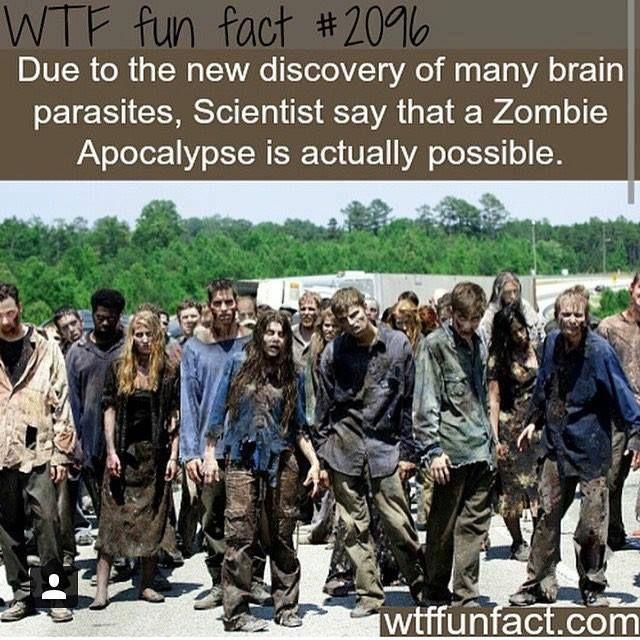 Zombob's Zombie News and Reviews: More fun facts!