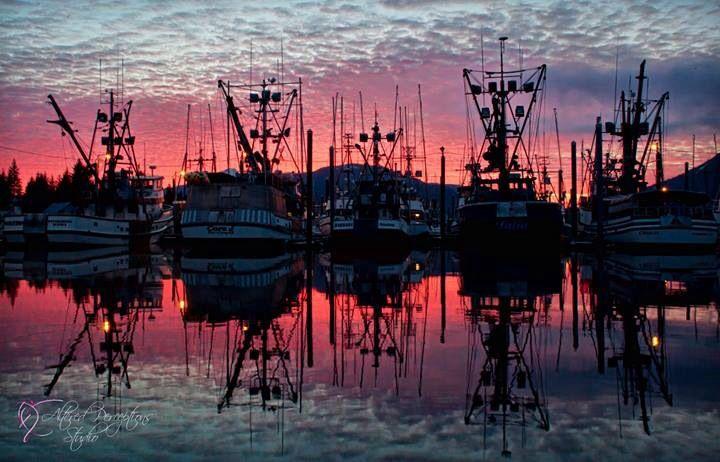 South harbor dock gorgeous sunset petersburg alaska for Petersburg alaska fishing