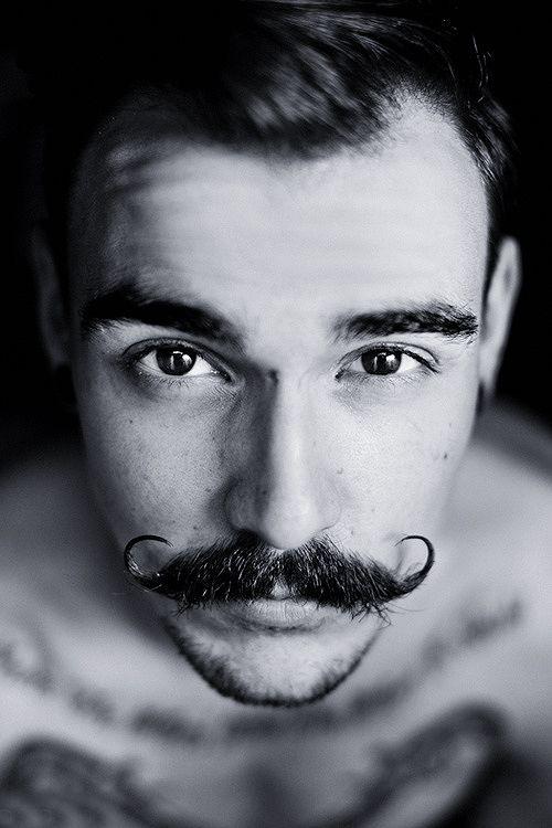 Quelle moustache adopter pour Movember ?