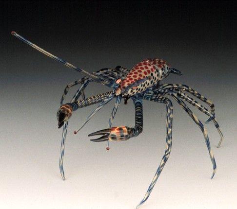 how to raise ghost shrimp