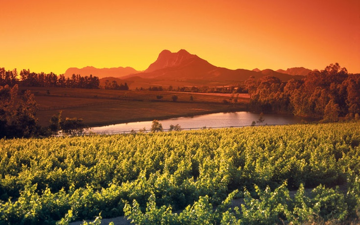 Paarl, Cape Winelands - South Africa