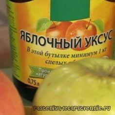 Яблочный уксус - польза и вред, как принимать, народное лечение