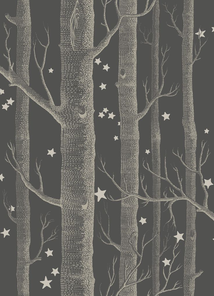 Woods and Stars Charcoal wallpaper by Cole & Son