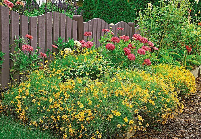 Secret Garden: Best 25+ Border Plants Ideas On Pinterest