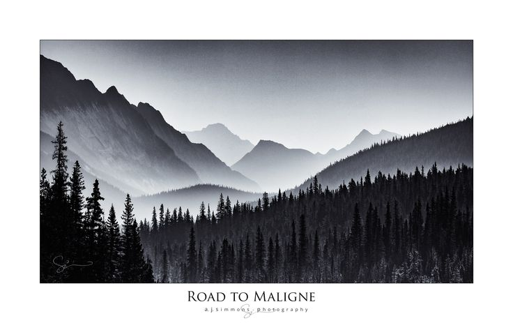 Road to Maligne, Jasper National Park, Alberta Canada