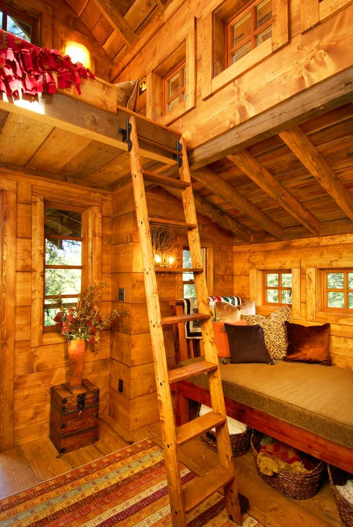 image result for treehouse masters new interior designer - Treehouse Masters Interior