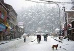 Manali, shimla  tour packages | #Manali #Shimla #holiday packages, Manali Shimla tours, #ManaliShimlaTourism packages | #SamSanTravels