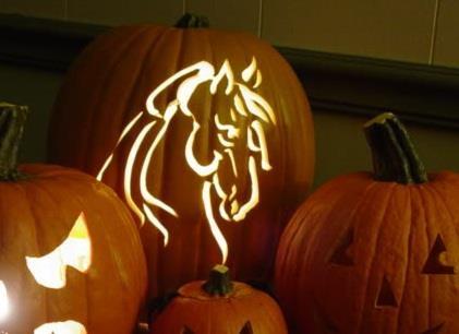 Pumpkin Horse