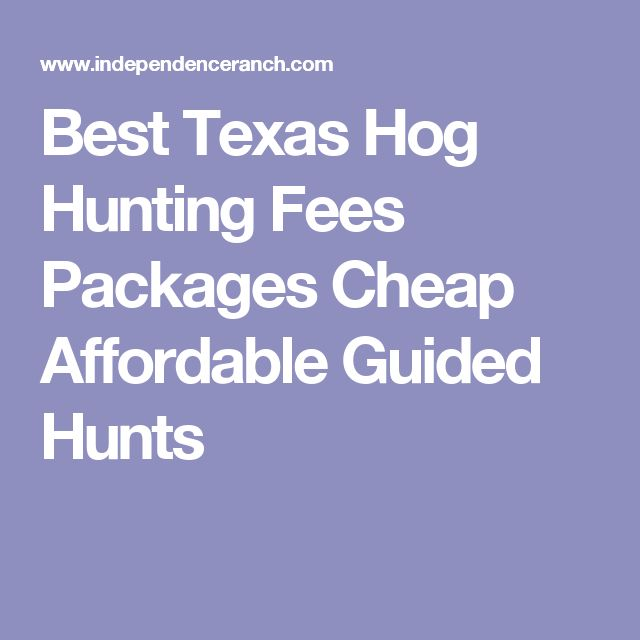 Best Texas Hog Hunting Fees Packages Cheap Affordable Guided Hunts