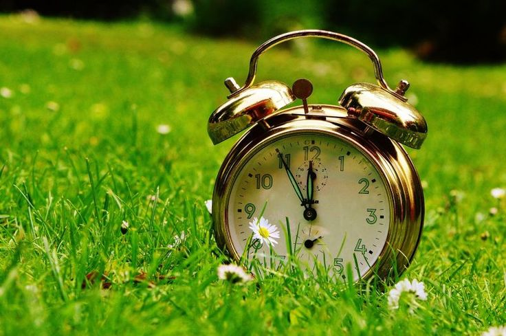 Você não tem tempo? Dicas de como organizar sua vida….