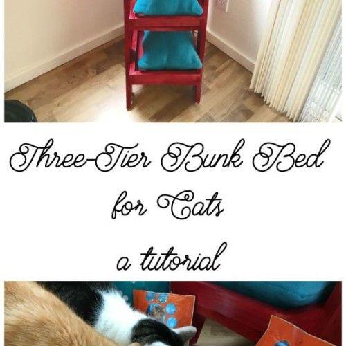 Best 117 Best Images About Diy Cat Stuff On Pinterest Cat 400 x 300