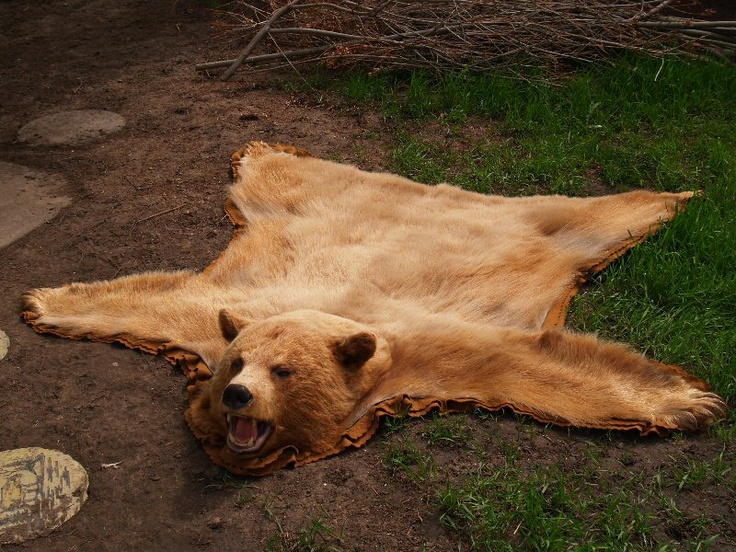 Bear Skin Rug!  Yup we really want one to put in front of our fireplace!