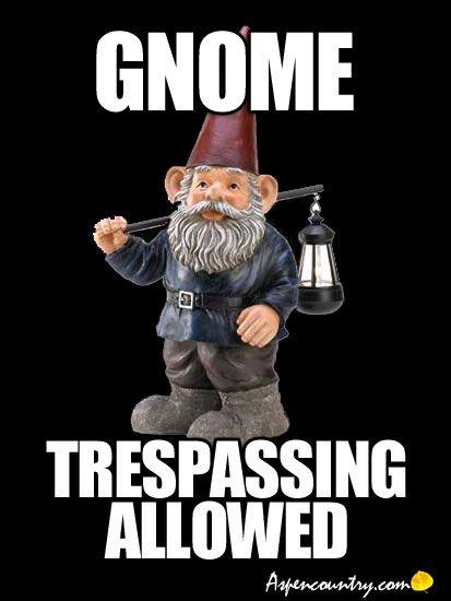 Funny Gnome: Gnome Trespassing Allowed