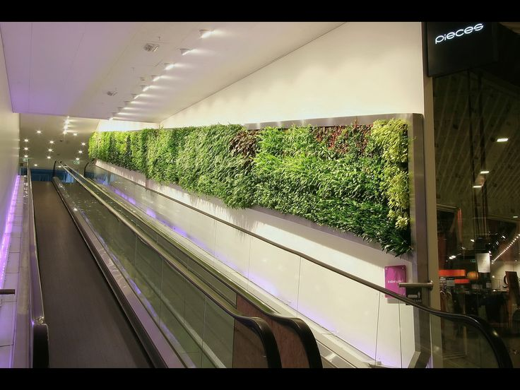 Beautiful plant wall at a shopping center from Vertical Plants System AB.