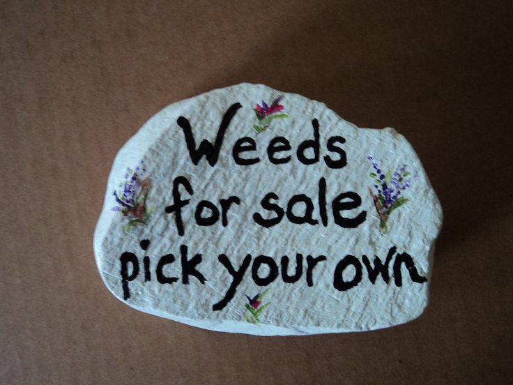 Weeds For Sale, Pick Your Own... I Normally Donu0027t. Painted Garden RocksPainted  ...