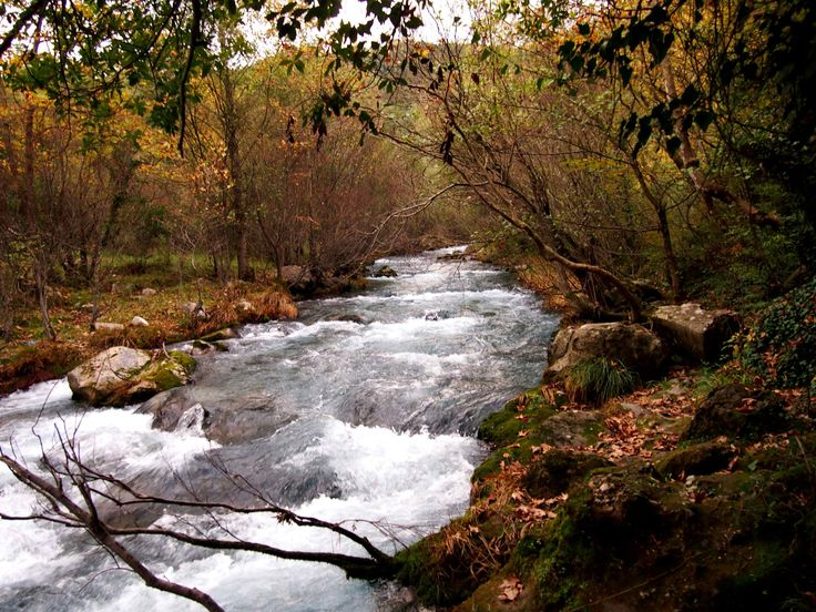 https://flic.kr/p/jsHDM6 | Arcadia - Lousios river (4) | The Lousios  is a river and a gorge in western Arcadia that stretches from Karytaina north to Dimitsana in Greece.