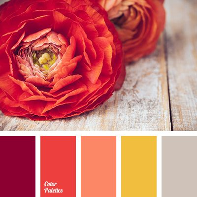 Bright pink color combined with a muted coral will look advantageous in the decor elements for home: vases, figurines, photo frames and textiles. In combination with a yellow saffron a touch of heat will be added, it will play in particular good on a light gray background.