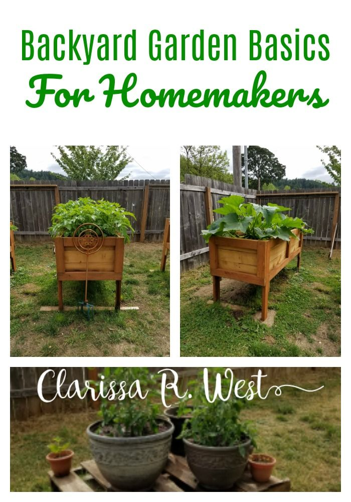 Backyard Garden Basics For Homemakers With Images Organic