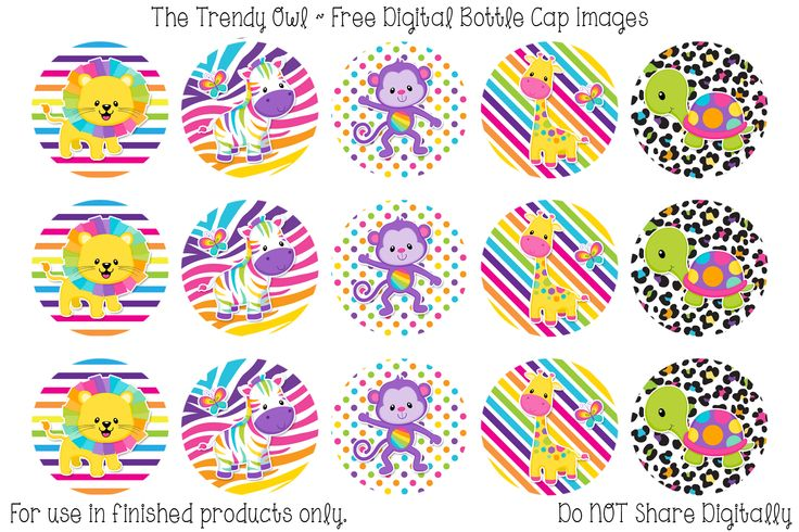 Best 25+ Bottle Cap Images Ideas On Pinterest