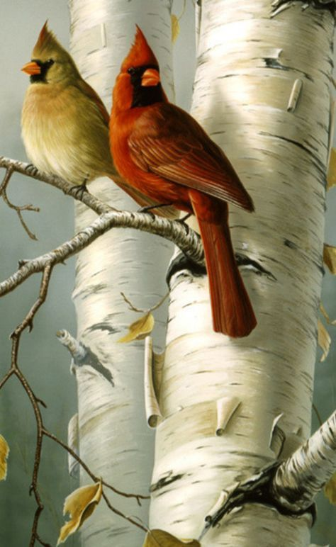 Cardinals and White Birches... 2 of my Mom's favorite ...