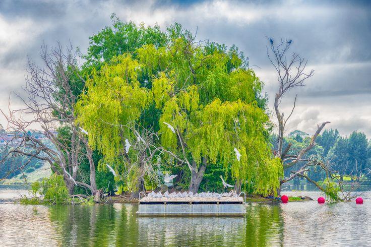 Lake Ginninderra Easter Sunday 2016