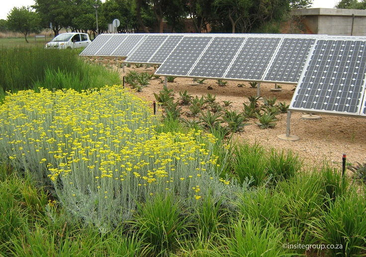 Insite's green philosophy allows designs that incorporates eco-centric principles in the final design solution. http://insitegroup.co.za/?project=dbsa-vulindlela-gatehouse
