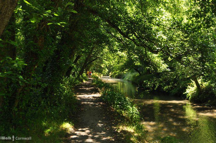 Pentewan Valley, Cornwall