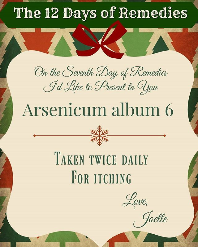 One the 7th Day of Remedies, my true love gave to me... Arsenicum album 6. Taken twice daily for itching.  #The12DaysOfRemedies