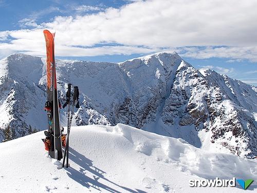 Top of Snowbird, Utah