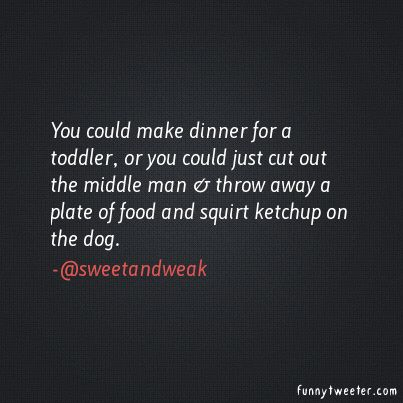 You could make dinner for a toddler, or you could just cut out the middle man  throw away a plate of food and squirt ketchup on the dog. | Funny Tweeter