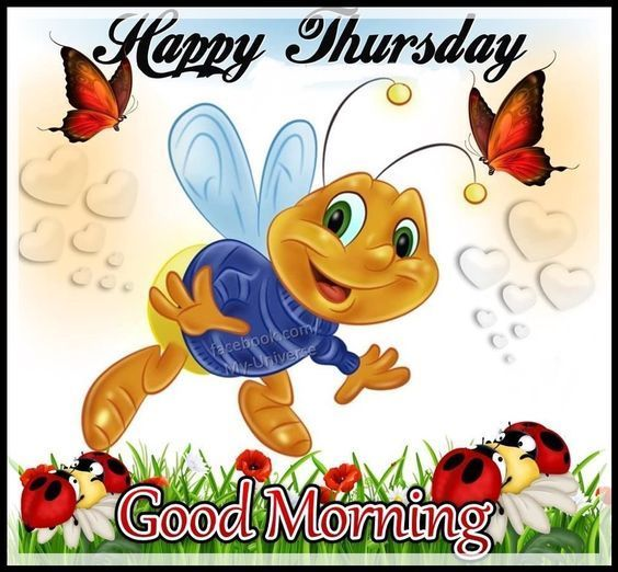Happy Thursday, Good Morning  good morning thursday thursday quotes good morning quotes hello thursday good morning happy thursday thursday morning pics thursday morning pic thursday morning facebook quotes good morning hello thursday hello thursday morning