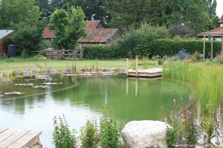 Wattisfield, Suffolk - The Swimming Pond Company Ltd.