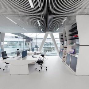 adidas x new sporty office