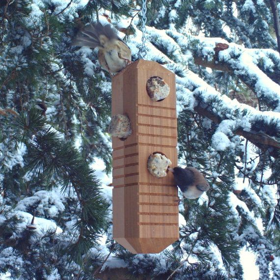 Woodpecker Bird Feeder From Recycled Wood
