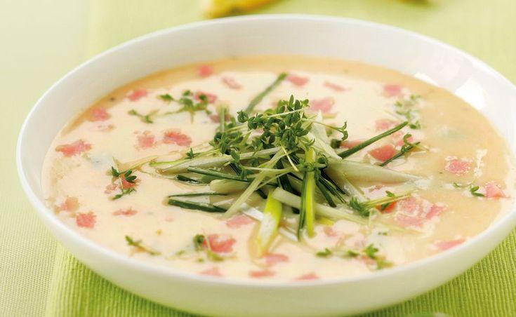 Von der Redaktion für Sie getestet: Schinken Suppe mit Kresse. Gelingt immer! Zutaten, Tipps und Tricks