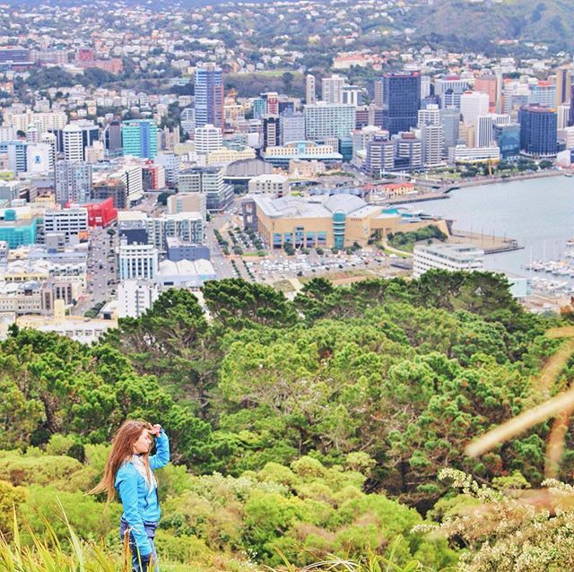 Walk to the top of Mount Victoria for amazing views of Wellington - aww yeah!