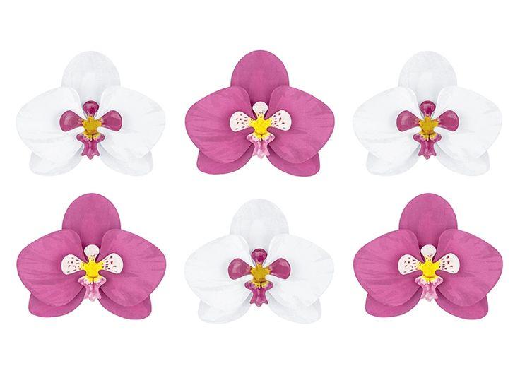 17 meilleures id es propos de fleurs tropicales sur pinterest fleurs hawa ennes fleurs. Black Bedroom Furniture Sets. Home Design Ideas