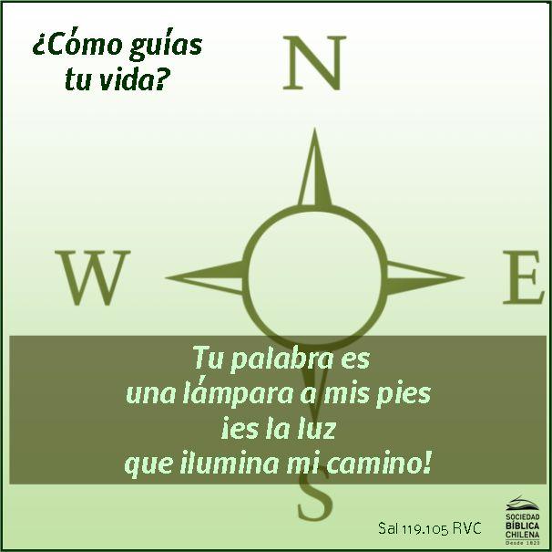 Tu palabra es una lámpara a mis pies; ¡es la luz que ilumina mi camino! Salmo 119:105 RVC