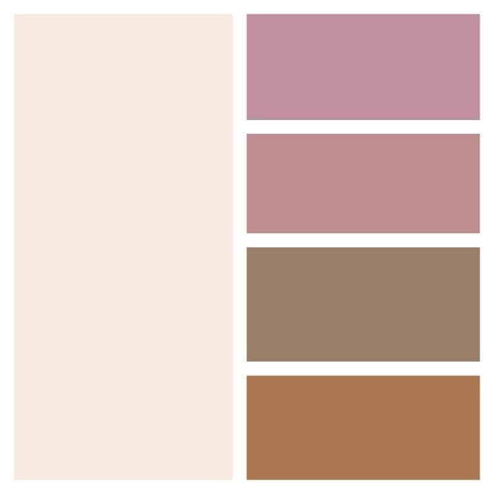 Paleta De Colores En Tonos Rosados Y Tierra Ballet
