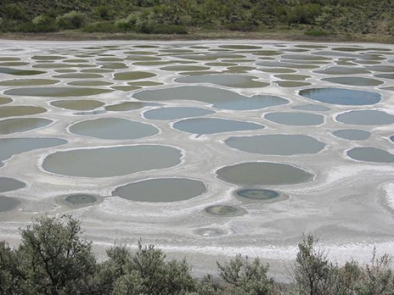 THE SPOTTED LAKE (KLILUK) - A lake sacred to the Native Americans, composed of 365 separate pools of highly concentrated minerals - This strangely-patterned body of water is located between the Okanagan and Similkameen Valleys in British Columbia's desert. It contains large amounts of magnesium sulfate, calcium and sodium sulfates and twelve other minerals including traces of silver and titanium. Considered a sacred medicine spot by First Nations in both Canada and the U.S.