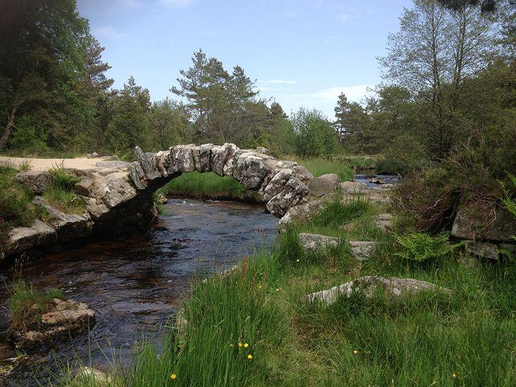 155 best nature et paysages de creuse images on pinterest - Office tourisme massif central ...