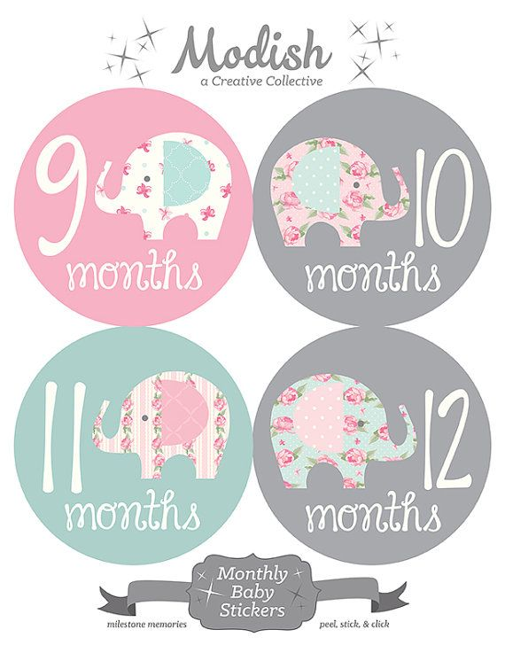 FREE GIFT Elephant Monthly Baby Stickers Baby Girl by ModishCC