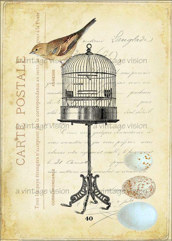 Vintage Prints, birdcage, large digital image no. 8a, 5 by 7- aged, antique, altered, bird, cage, egg, post card