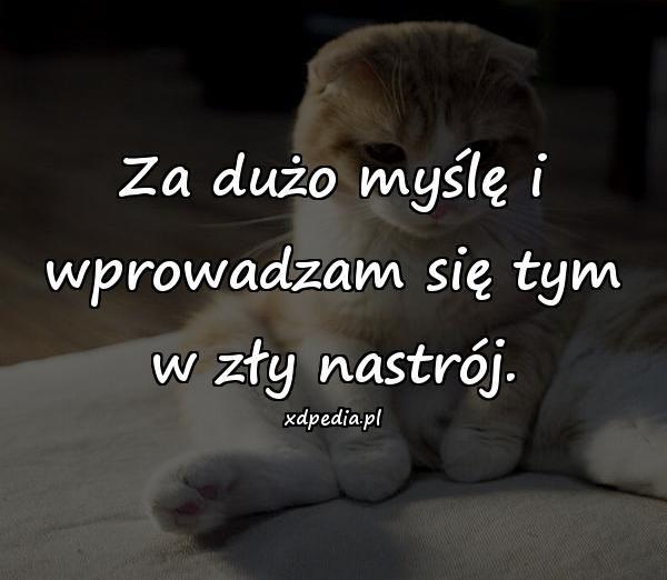 http://www.xdpedia.com/obrazki/za_duzo_mysle_i_wprowadzam_sie_tym_14304.jpg