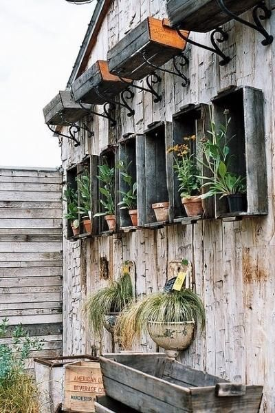 old drawers , crates and boxes as unique wall planters