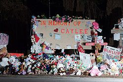 Memorial near where Caylee Anthony's remains were found