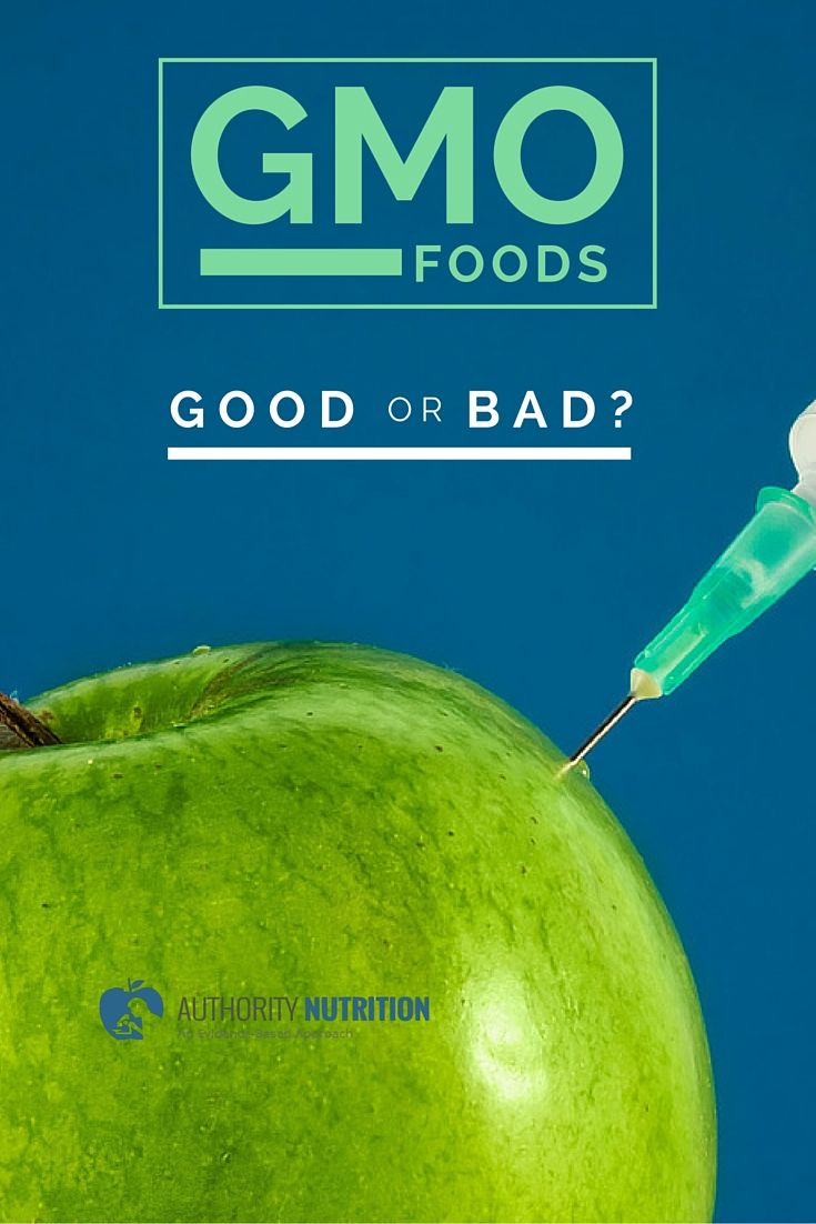 gmos good or bad The question is, are genetically modified organisms good or bad  to totally  ban all gmos to be grown or sold would be throwing out the.