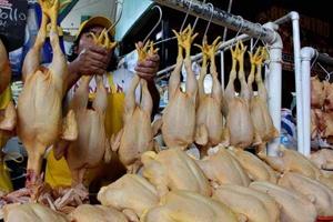 Aumento en el consumo de carne de ave en Venezuela