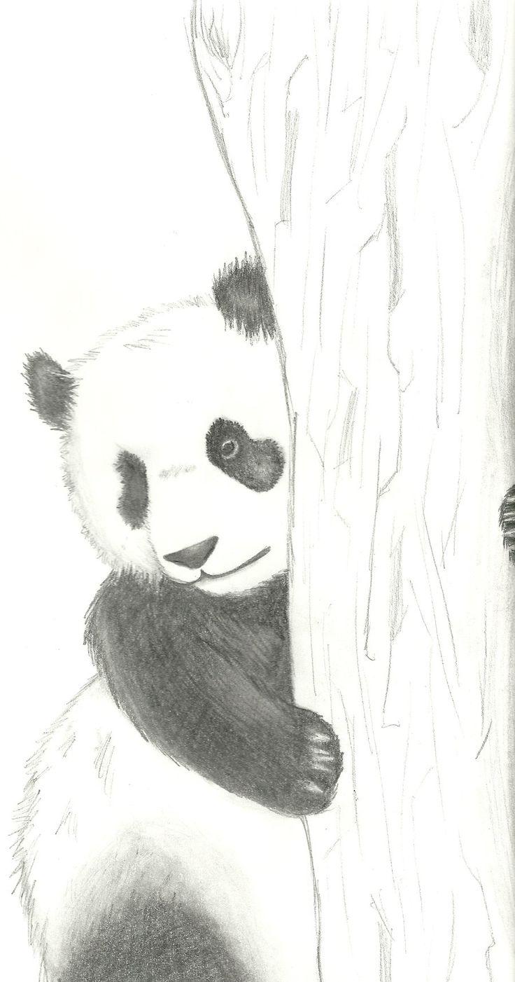 зашит животные рисунки карандашом легко панда рабочих